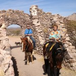 Horseback Riding san carlos mexico
