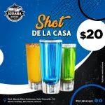 Mr. Iguana shots